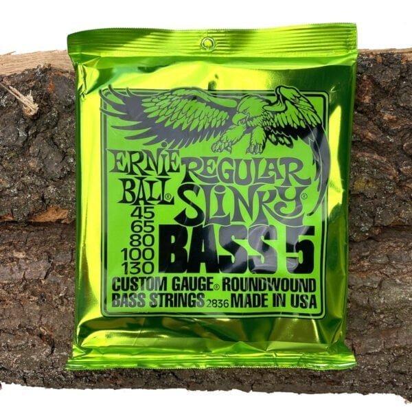 Ernie Ball Regular Slinky Bass 5